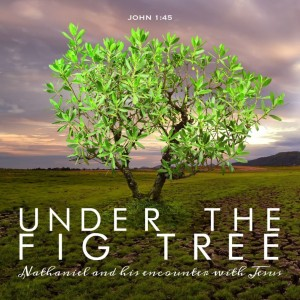 Under-the-Fig-Tree-1024x1024